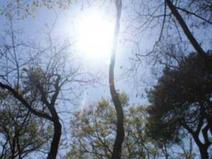 Güneş çarpması insanı sakat bırakabilir