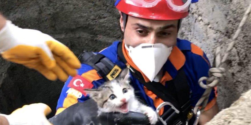 Konyada su kuyusuna düşen yavru kedi kurtarıldı