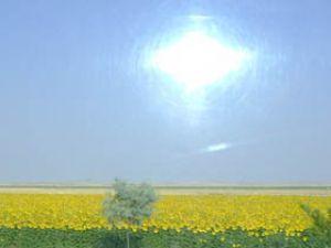 Altınekinde organik tarım büyük gelişme kaydetti
