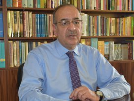 Türkiye ayçiçeği ithalatını 3-5 yılda bitirebilir