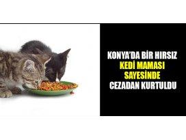 Sokak kedilerine mama yardımıyla cezadan kurtuldu