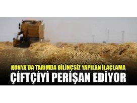 Konyada tarımda bilinçsiz yapılan ilaçlama çiftçiyi perişan ediyor
