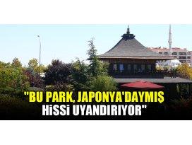 Bu park, Japonyadaymış hissi uyandırıyor