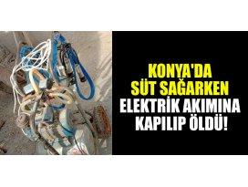 Konyada süt sağarken elektrik akımına kapılıp öldü