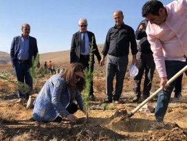 Hüyükten ağaçlandırma seferberliğine 20 bin fidanla destek