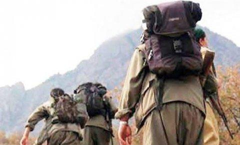PKK'lının dağ ömrü 5.8 yıl