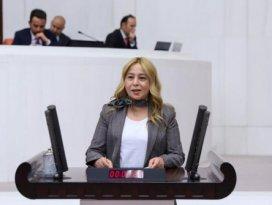 MHP'li Esin Kara'dan Pakdemirli'ye soru önergesi