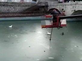 Suda ayakları donan kazları itfaiye kurtardı