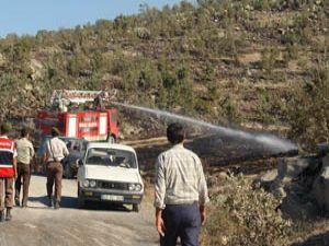 Orman yangınında 10 hektarlık alan kül oldu