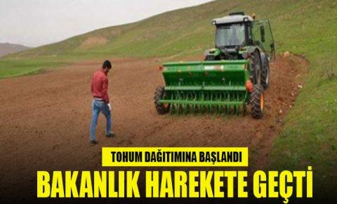 Bakanlık ekilebilir araziler için harekete geçti, tohum dağıtımına başlandı