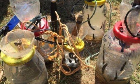 Beyşehir Gölü'nde yasa dışı sülük avcılığına 8 bin lira ceza