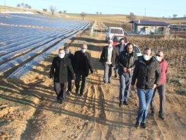 Güneş paneli çalınan çiftçiler tarlalarda nöbet tutuyor
