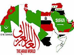 Türkiyeden Araplara referandum dersi