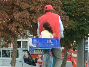 Küçük kızın sebze kasasında yolculuğu