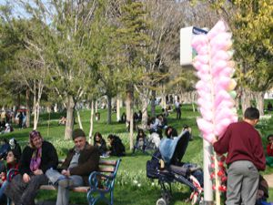 Bahar geldi parklar şenlendi