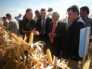 Tarla gününde yeni mısır çeşidi tanıtıldı
