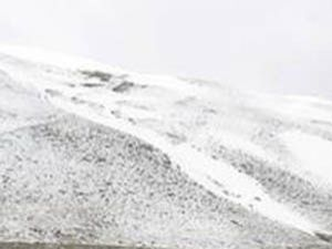 Konyaya yılın ilk karı yağdı