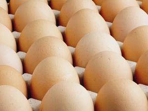 Yumurtadaki artışın 3 sebebi