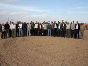 Kaliteli buğday üretimine Borsadan destek