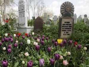 Mezarlıklar renklendi