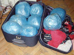 Polis köpeği 10 kilo uyuşturucu yakaladı