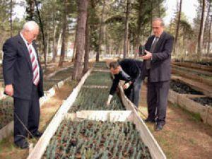Konyaya yeni orman müdürü atandı