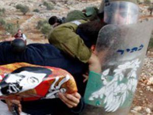 81 Filistinli gözaltında