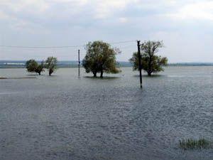 Aşırı yağış zarara uğrattı
