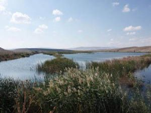 Kurutulan göl yeniden hayata dönüyor