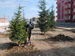 Yapılan yatırımlarla Karatayın çehresi değişiyor