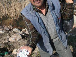 Beyşehir göl kenarları ilaçlanıyor