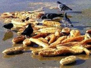 Büyük ekmek israfı
