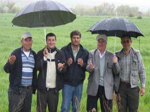Konya çiftçisi dört gözle yağış bekliyor
