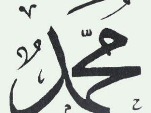 Hz. Muhammedin Hayatı ve Aile konferansı