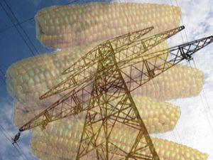 Türkiyede bir ilk! mısırdan elektrik üretilecek