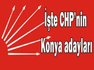 İşte CHPnin Milletvekili Aday Listesi
