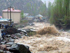 Hakkaride sel: 15 evi su bastı, 220 hayvan telef oldu