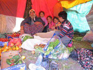 15 Lira gündelik için çadırda yaşam mücadelesi