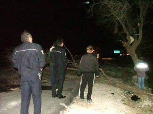 Kopan elektrik telleri ağaçları yaktı