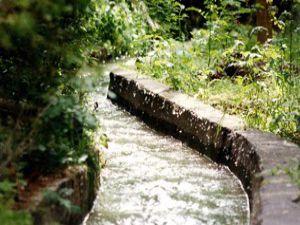 İlk sulama suyu 20 Haziranda