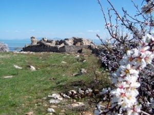 Kubadabad Sarayları kazıları yeniden başladı