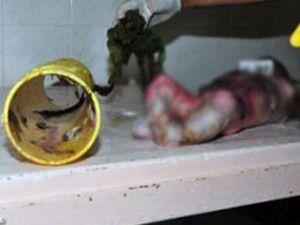Su borusundan bebek cesedi çıktı!