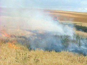 Altınekinde 40 dekar buğday tarlası yandı