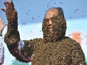 Arılar vücutlarını sardı ama...