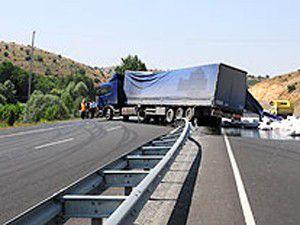Arı soktu, TIR şoförü kaza yaptı