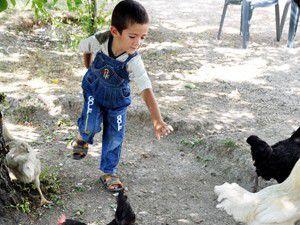 Türkiyede nakil yapılan en küçük hasta