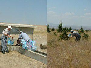 Pet şişelerle su taşıyıp fidan suluyor