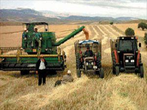 Ekmeklik buğday alım fiyatı açıklandı