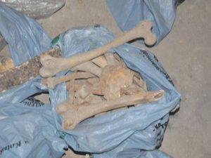 Konyada insan kemikleri ortaya çıktı