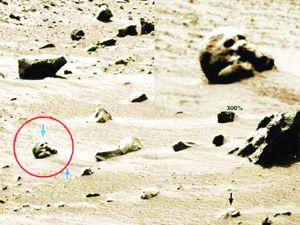 Marsda bir kafatası!